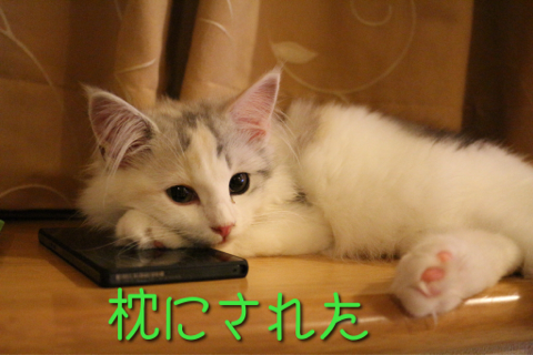 image-20150722163813.png